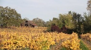 Autumn Barn Tracking 0820 Stock Footage