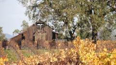 Autumn Barn Rack Focus 0815 Stock Footage