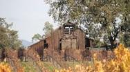 Old Rustic Barn on Vineyard 0812 Stock Footage