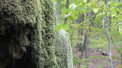 Waterfall silver stream in Crimea. Stock Footage