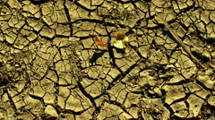 Dried out cracked earth 1 Stock Footage