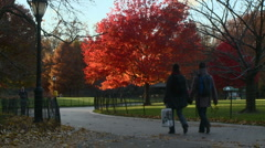 New York Couple Walking in Central Park - stock footage
