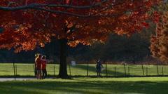 New York Central Park Fall Medium shot Stock Footage