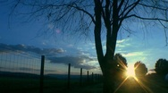 Stock Video Footage of time lapse sunrise tree and fence