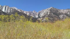Brush blows in front of Mt. Whitney in the Sierra Nevada mountains in Stock Footage