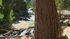 A moving shot past a tree to reveal a beautiful alpine waterfall. Stock Footage