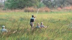 Mokoro dugout canoe pushed by pole Okavango Delta Stock Footage