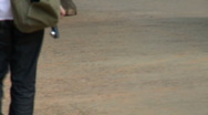 Stock Video Footage of A elephant walking on a paved road