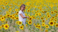 Stock Video Footage of Among sunflowers