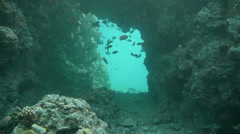 Free diver tunnel P1 Stock Footage