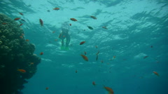 Free Diver P8 Stock Footage