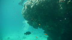 Free Diver P9 Stock Footage