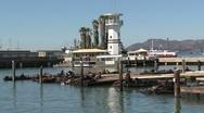 Stock Video Footage of Pier 39 San Francisco