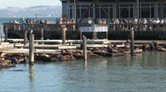 Stock Video Footage of Pier 39 San Francisco