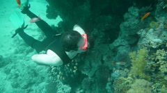 Free Diver P6 Stock Footage
