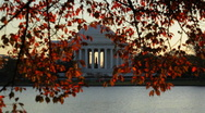 Stock Video Footage of Jefferson Memorial 01 HD