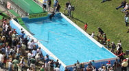 Dog Jumps into Pool during competition Stock Footage