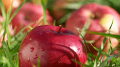 Red apples with water drops in green grass panning time-lapse Stock Footage