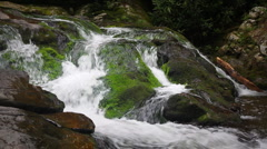 Waterfall Over Mossy Rocks Stock Footage