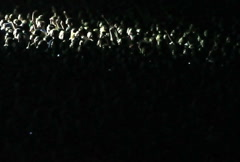 Cheering Crowd at Concert 1 - stock footage