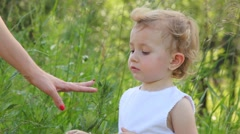 Girl is looking at a ladybug, that is sitting on her mother finger Stock Footage
