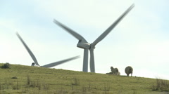 wind turbines and sheep on a hill - stock footage