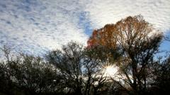 Beautiful Autumn Sun Time Lapse - stock footage
