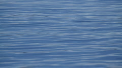 Water surface ripple - stock footage