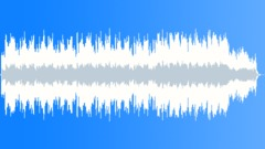 Travellin' Man (Cue3)(guit+harp) Stock Music