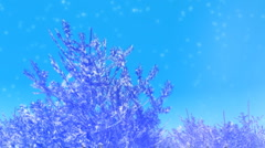 Christmas Trees Snow Loop MMlarge - stock footage
