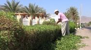 Gardener Stock Footage