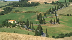 Tree lined Winding road Val d'Orcia nr Pienza Tuscany Italy - stock footage