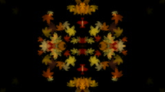 Golden maple leafs shaped flower pattern.pattern,symbol,dream,vision,idea,creati Stock Footage