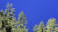 Trees and Crater Lake Stock Footage