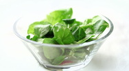 Stock Video Footage of green salad