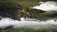 Umpqua River Stock Footage