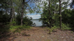 Clearing to lake - stock footage