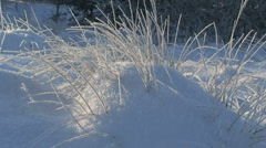 Cold winter day Stock Footage