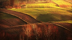 Meadows and hills, autumn season. Stock Footage