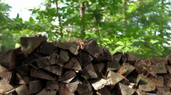 Woodpile_03 Stock Footage