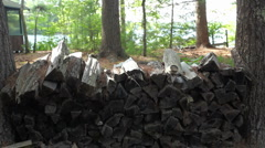 Woodpile_01 Stock Footage