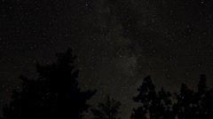 Timelapse - Bright Stars Moving with Tree Silhouettes in Foreground Stock Footage