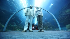 Bottom view on couple in oceanarium - stock footage