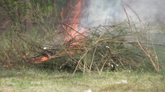 Brush Fire Burns Out Of Control Stock Footage