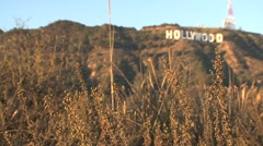 Hollywood Sign blur - stock footage