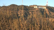 Stock Video Footage of Hollywood Sign blur
