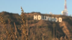 Hollywood Sign from blur to sharp - stock footage