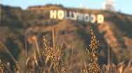Stock Video Footage of Hollywood Sign from blur to sharp