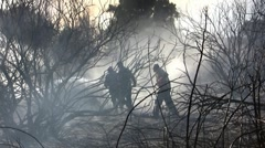 Fire fighters against ferocious fire Stock Footage
