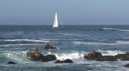 Stock Video Footage of Sailboat Westcoast, California, United States